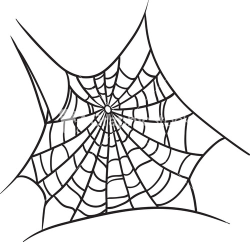 vector spider web design