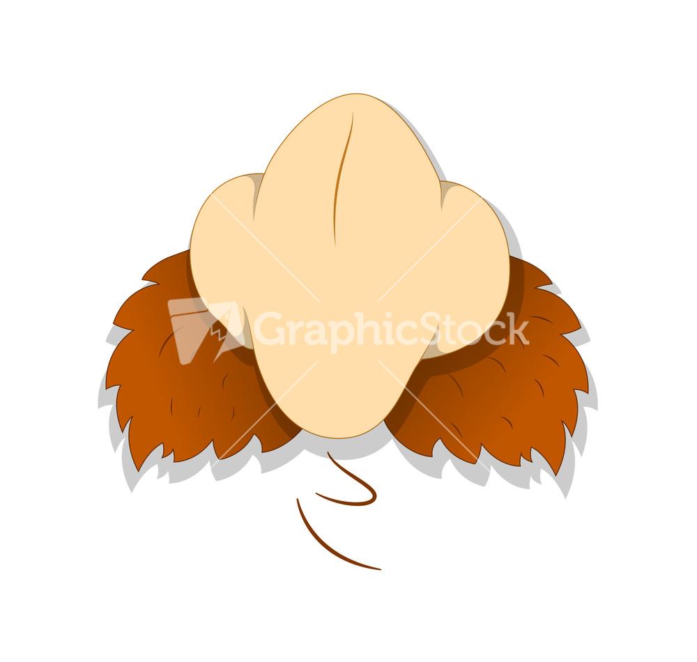 Cartoon Nose Stock Image