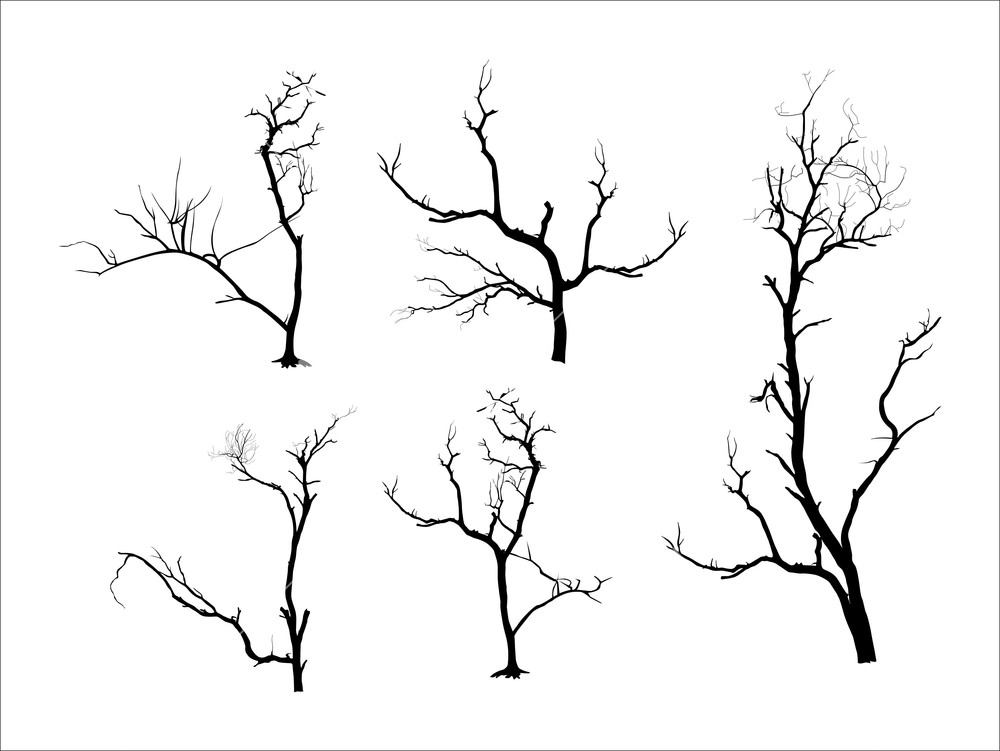 Dead Tree Silhouettes together with Music Notes Die Cut Vinyl Decal Pv684 likewise Wolverine Die Cut Vinyl Decal Pv259 besides Happy Clown 2 Coloring Page in addition Deathnote Font. on scary halloween nature