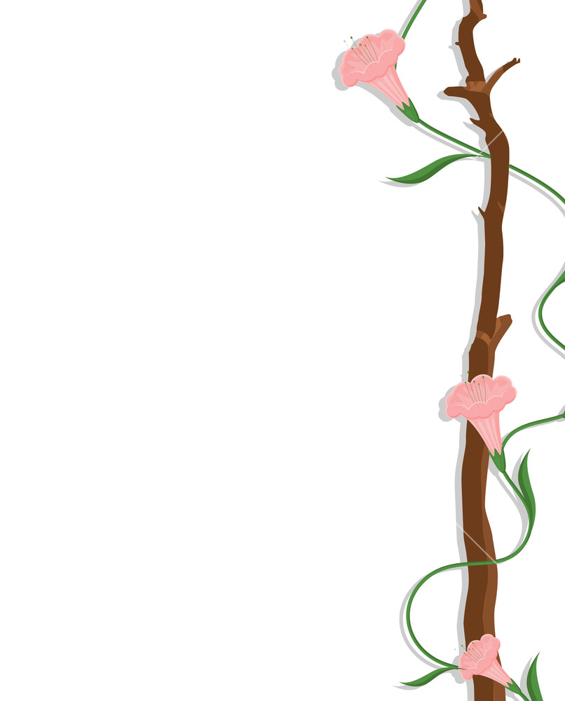 decorative flowers border stock image - Decorative Flowers