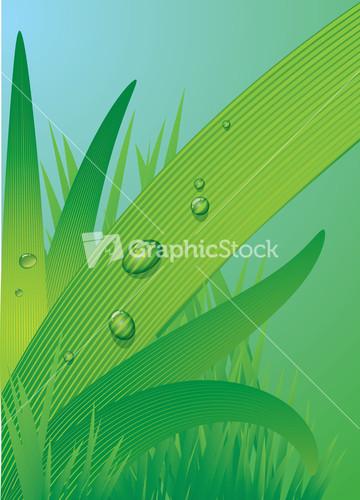 blade of grass vector - photo #25