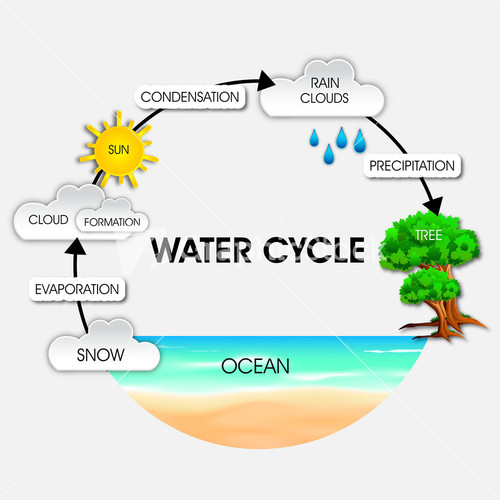 Nature Background With Water Cycle.