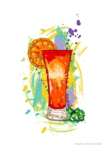 Mojito Cocktail Vector Illustration Stock Image