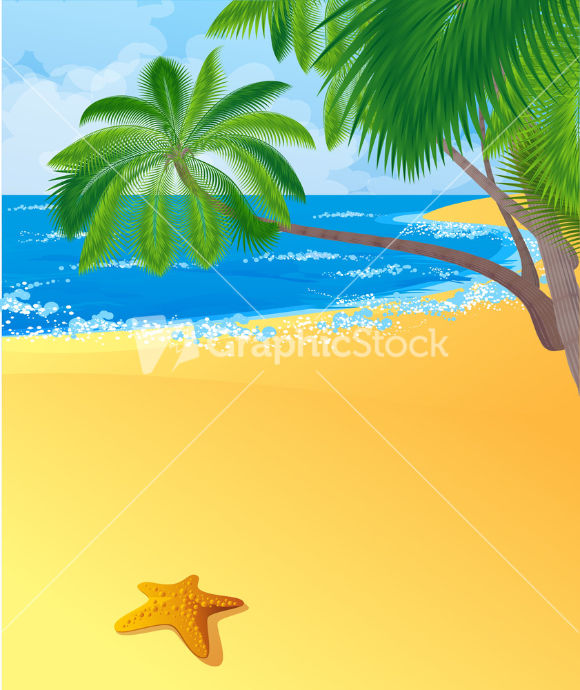 Palm Tree Island: Tropical Island With Coconut Palm Trees. Vector