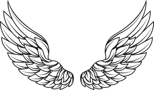 wings-vector-element_GkTXg3L__S.jpg