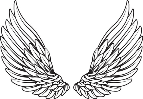 Wings Vector Element Stock Image