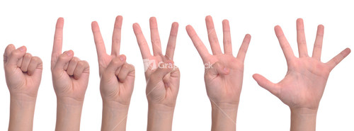Woman Hands Counting