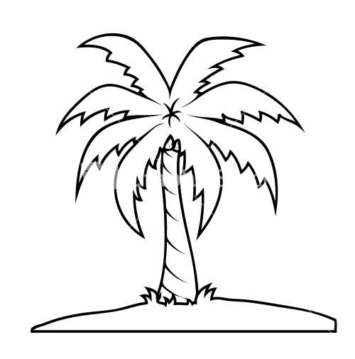 Line Drawing Palm Tree : Palm tree royalty free vectors illustrations and photos