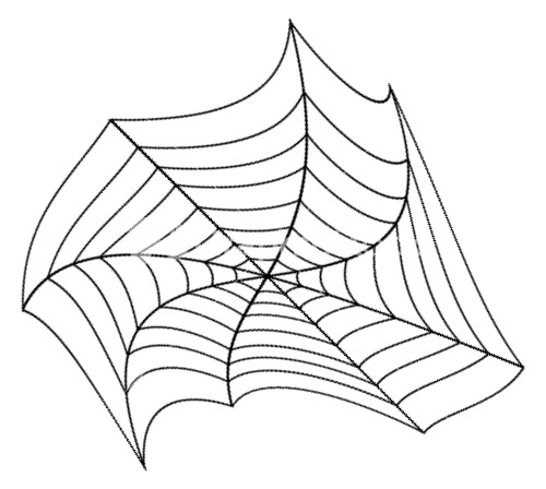 Vector Spider Web Design
