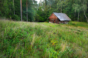 Countryside House In Rural Forest Area