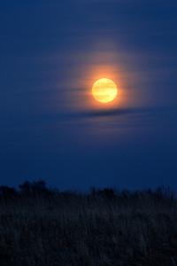 Full Moon Over Rural Landscape