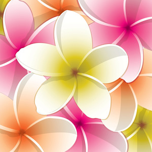 All Purpose Bright Frangipani Card In Vector Format.