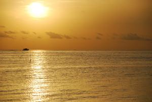 Puesta del sol anaranjada hermosa en una playa tropical