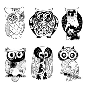 Collection Of Six Different Owls