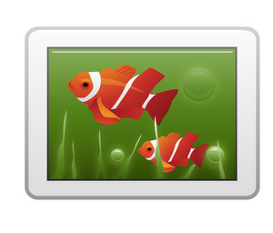 Fish Image On Tablet