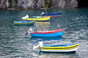 Fishing Boats On Madeira
