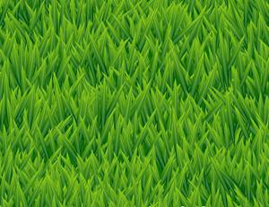 新鮮な草シームレスなベクトルパターン。