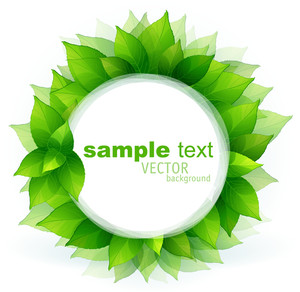 Verde fresco deja la frontera del vector.