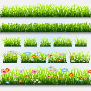 잔디와 꽃