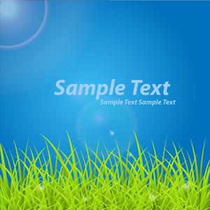 Grassline Template Design