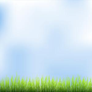 녹색 잔디와 푸른 하늘