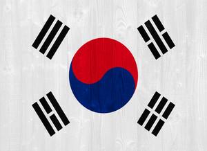 한국 플래그