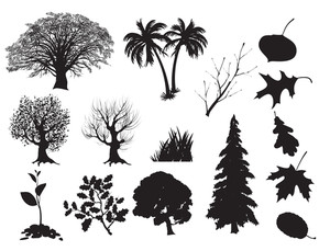 Trees. Vector.