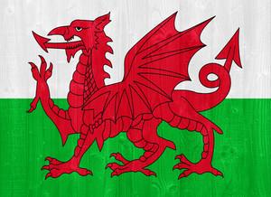 웨일즈의 국기