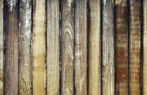 Wood Texture 62